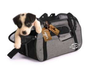 Personalized Pet wooden luggage tag